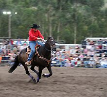 Picton Rodeo BR4 by Sharon Robertson