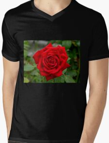 Roses Are Red... - NZ Mens V-Neck T-Shirt