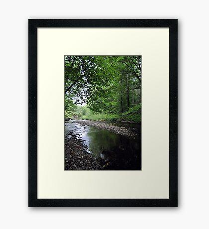 Quiet Brook Framed Print