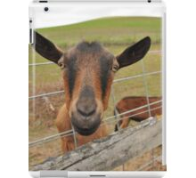 Oberhasli Goat Coming Through The Fence iPad Case/Skin