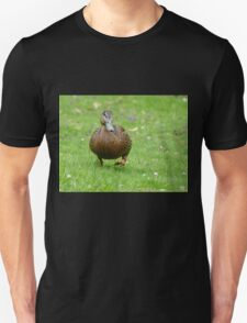 Delightful Daffy Duck - NZ Unisex T-Shirt