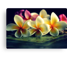 The Last Beauties Of Summer Canvas Print