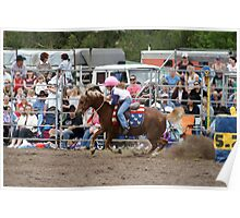 Picton Rodeo BR7 Poster