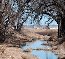 Sage River by Greg Birkett