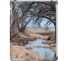 Sage River iPad Case/Skin
