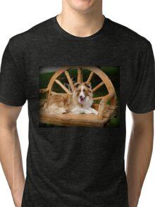 My Chair - Border Collie - NZ Tri-blend T-Shirt