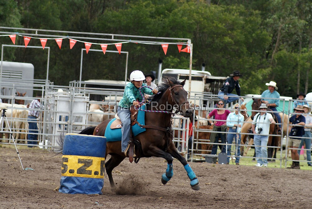 Picton Rodeo BR12 by Sharon Robertson
