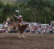 Picton Rodeo BRONC2 by Sharon Robertson