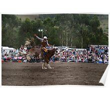 Picton Rodeo BRONC2 Poster