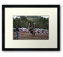 Picton Rodeo BRONC3 Framed Print