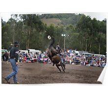 Picton Rodeo BRONC3 Poster