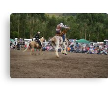 Picton Rodeo BRONC7 Canvas Print