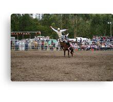 Picton Rodeo BRONC8 Canvas Print
