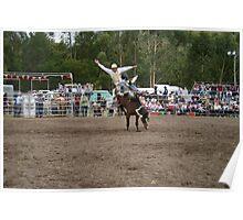 Picton Rodeo BRONC8 Poster