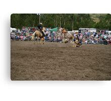 Picton Rodeo BRONC12 Canvas Print