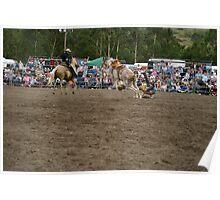Picton Rodeo BRONC12 Poster