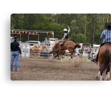 Picton Rodeo BRONC14 Canvas Print