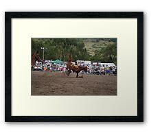 Picton Rodeo BRONC15 Framed Print