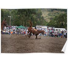 Picton Rodeo BRONC15 Poster