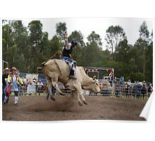 Picton Rodeo BULL2 Poster