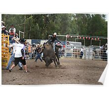 Picton Rodeo BULL5 Poster
