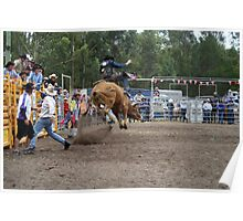 Picton Rodeo BULL8 Poster