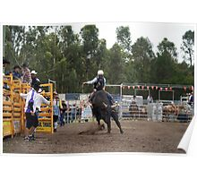 Picton Rodeo BULL9 Poster