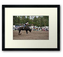 Picton Rodeo BULL10 Framed Print
