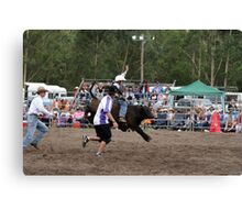 Picton Rodeo BULLKID Canvas Print
