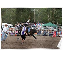 Picton Rodeo BULLKID Poster