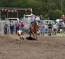 Picton Rodeo ROPE1 by Sharon Robertson