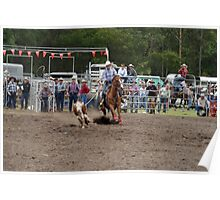 Picton Rodeo ROPE1 Poster
