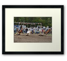 Picton Rodeo ROPE2 Framed Print