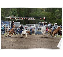 Picton Rodeo ROPE2 Poster