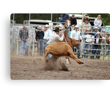 Picton Rodeo ROPE3 Canvas Print