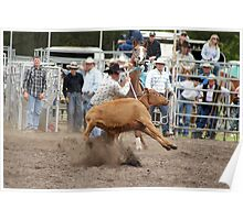 Picton Rodeo ROPE3 Poster