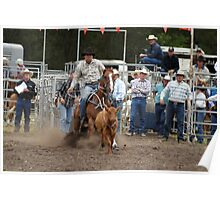 Picton Rodeo ROPE4 Poster