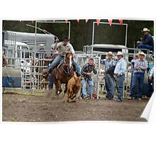 Picton Rodeo ROPE5 Poster