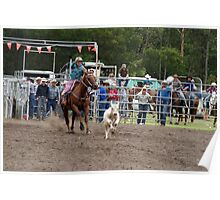 Picton Rodeo ROPE6 Poster