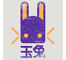 Jade Rabbit Insignia grunge Photographic Print