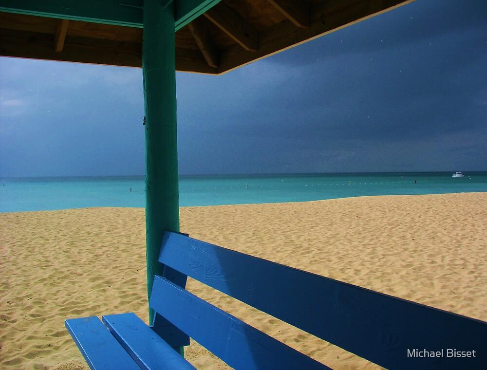 beach hut cayman islands caribbean by Michael Bisset