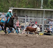 Picton Rodeo ROPE9 by Sharon Robertson