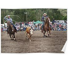 Picton Rodeo ROPE10 Poster
