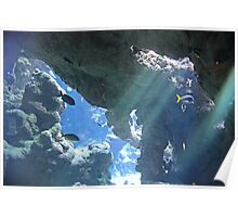 Sun Rays Through the Water Poster