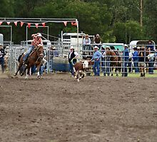 Picton Rodeo ROPE16 by Sharon Robertson