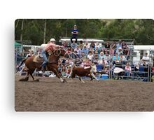 Picton Rodeo ROPE17 Canvas Print