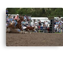 Picton Rodeo ROPE18 Canvas Print