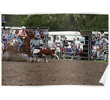 Picton Rodeo ROPE18 Poster