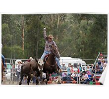 Picton Rodeo Tag Poster