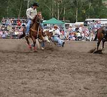 Picton Rodeo STEER1 by Sharon Robertson